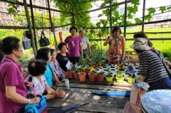 共好、共老、共陪 台南國平社區打造都市桃花源