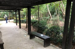 林口樂活公園一男上吊輕生 民眾晨運發現嚇壞報警
