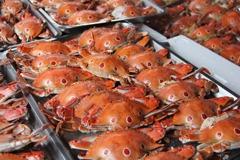新北推萬里蟹系列活動 到漁人碼頭就吃的到萬里蟹