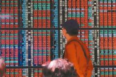 證交所數據更新 定期定額熱門榜大風吹