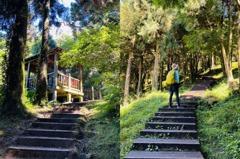 桃園復興「東眼山國家森林遊樂區」 仙氣四溢的自導式步道
