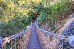 台中大坑步道橋樑全面健檢完成 確保登山設施安全耐用