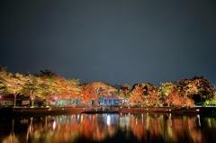 台南「月津港燈節」水域景觀璀璨變身!夜間「浮光水岸」燈景美翻