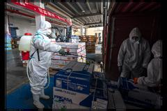 陸CDC:去年4月後大陸新冠疫情 病毒都源自境外