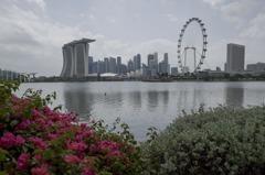 新加坡批准使用第2款疫苗 莫德納疫苗提前運抵