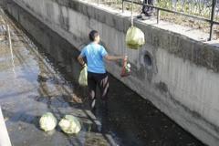 員林辦燈會市區大排被丟10幾包垃圾 市長森氣氣