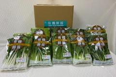 延後開學小農受衝擊 桃園推有機蔬菜認購昨提前完售