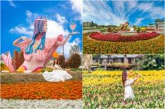 現場圖優先看!「2021桃園彩色海芋季」3/27登場 近6公頃花園+美人魚花毯