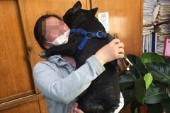 汐止警調閱監視器尋獲愛犬 女飼主激動到哭