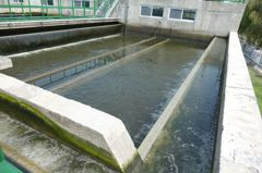 李鴻源質疑再生水無進度 營建署駁:可日供8.6萬噸水