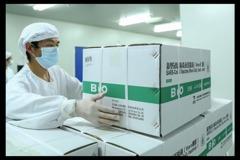 陸疫苗協會:明年陸製疫苗達50億劑 7成大陸人年底接種