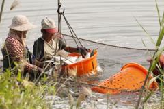 漁民投保「降水量水產保險」 達約定累積雨量自動理賠
