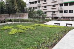 淡水廢棄建築、鐵皮 拆除成綠地空間