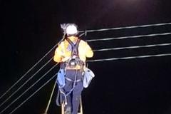 貓卡在電線杆 全街100戶斷電5分鐘展開救援行動