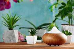 打造安心居家風水,增旺健康運就靠這4件事