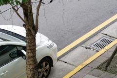 黃線停車送兒進入幼兒園遭警開單 男子抗罰勝訴