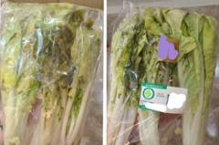 花699網購蔬菜箱 他分享慘烈踩雷經驗「菜都爛掉還有臭味」