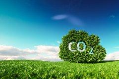 企業內部碳價訂定與氣候效益