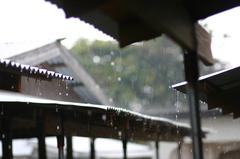週二起梅雨鋒重返 有望再助水情