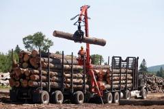 美消費者出門去、減少DIY 木材價格大跌