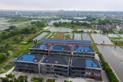 中國碳中和目標 7省市先推碳排放試點評估