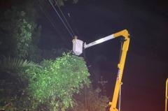 疑因路樹倒塌壓到電線 高雄那瑪夏區停電4小時