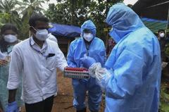 致命率高於新冠病毒…立百病毒重現印度南部 地方政府警戒