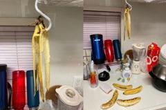 日本地震狂搖!香蕉集體陣亡倒地 畫面掀網熱議:太「蕉」慮
