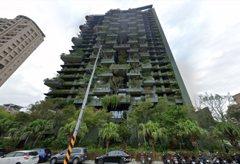 這棟建築都是草像發霉? 內行:竹北第一豪宅貴爆