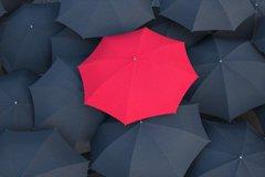 扯!在桃園掉雨傘得跑台北領 議員盼機捷增設招領站