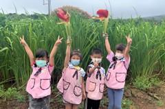 超Q!三芝幼兒園發揮創意 學生採筊白筍當火炬傳遞聖火