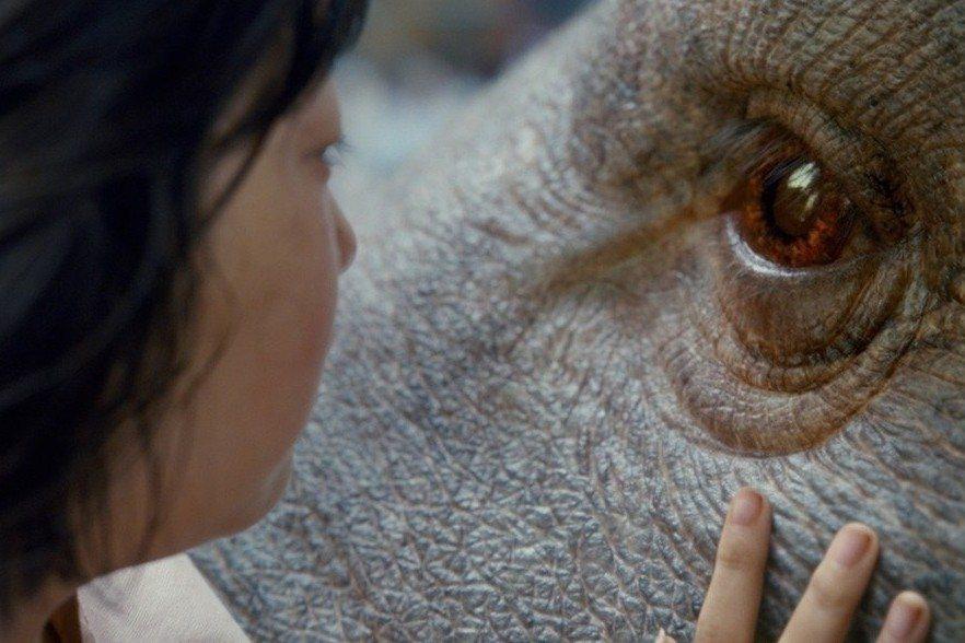 動物的命運,也是人的命運——評奉俊昊《玉子》