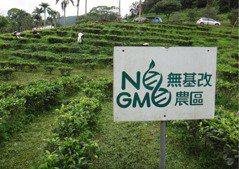 食安未爆彈:基因改造食品真相