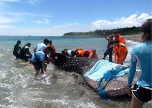 別去海生館才對海洋保育更有幫助?