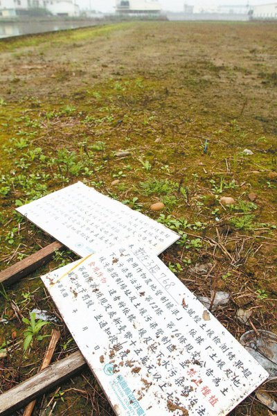 廢水流入黃墘溪,造成下游農地汙染,無法耕種。 記者陳瑞源/攝影