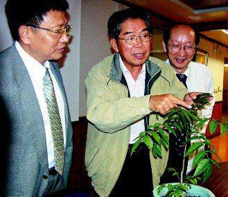 高雄長庚醫院醫師陳忠仁(右起)、高醫教授許勝光,發現香椿嫩葉的萃取物TSL-1,...