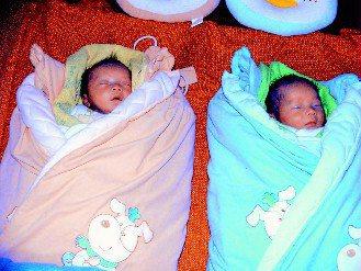 桃園縣五十七歲的黃姓婦人接受人工受孕,上月生下試管龍鳳胎,小兄妹(右、左)昨天滿...