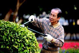 園藝治療可幫助失智老人緩和情緒。 圖/東方影像