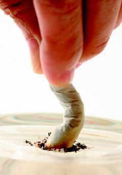 明天(11月17日)是世界肺癌日。隨著吸菸盛行,肺癌持續增加。這現象從歐美大陸到...