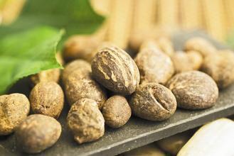 常用於保養品的成分「乳油木果」,現在也用於退化性關節炎的保健。 圖/業者提供