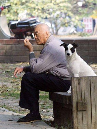 年輕人口向都會區集中,使偏遠鄉鎮人口快速老化,很多老人只有寵物陪伴。 本報資料照...