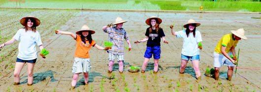 大園高中6名來自各國的交換學生,下田插秧,直呼「好好玩」。 記者林麗如/攝影