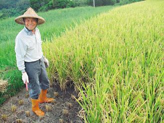 買買氏在台灣旅行一年,深深覺得友善耕種的農夫是大家的老師、更是守護環境的勇士。 ...