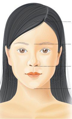 若將臉部分成三等分,額頭到鼻根、鼻根至人中頂端、人中至下巴,理想上臉部的最佳比例...