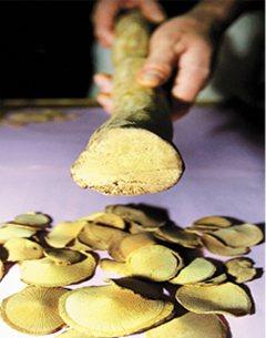 圖為含有馬兜鈴酸的中藥材的「關木通」條狀及切片。報系資料照片
