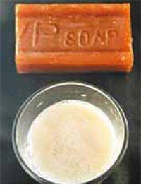 達人推薦好物:洗衣肥皂、檸檬酸粉。(記者鄭超文/攝影)