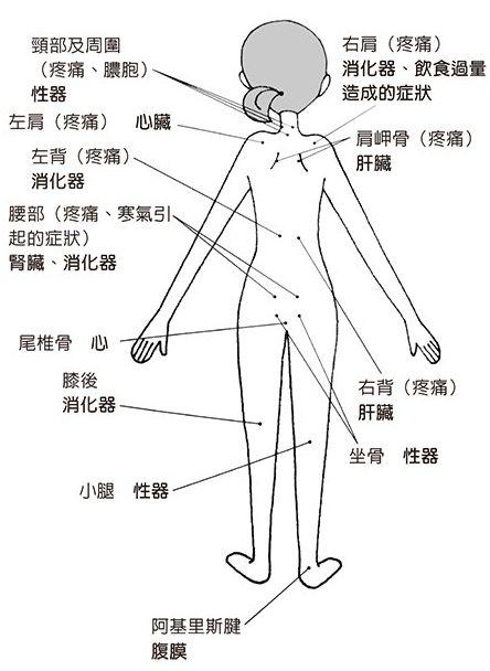 寒氣入侵與飲食過量的外顯症狀及部位。 排寒前後所出現的症狀,即使相同也有所差別,...