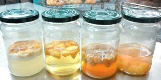 利用四種已去皮的水果養酵母,由左至右是香蕉、蘋果、桂圓、葡萄,第二天,香蕉就出現...