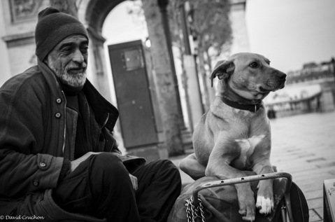 喪家之犬,帶狗之人