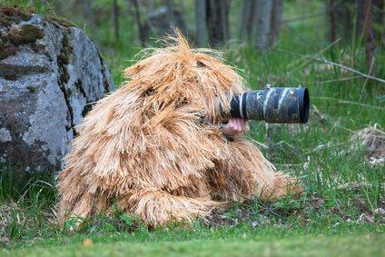 圖片來源/ slr nature photography guide